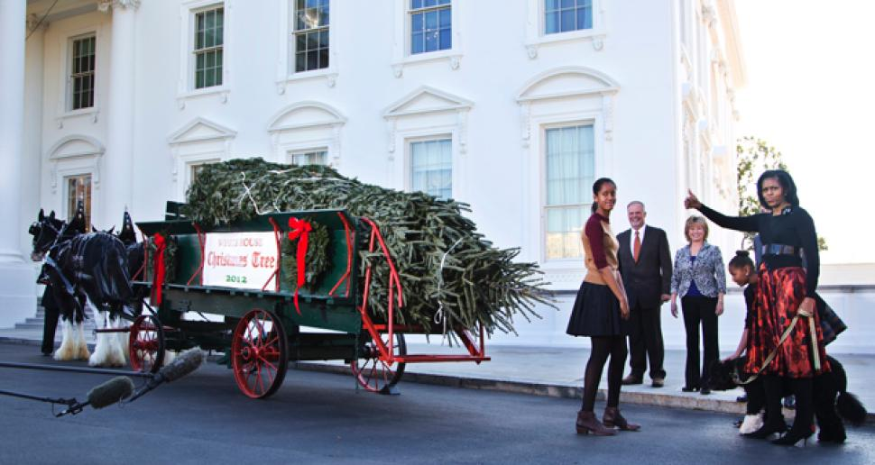 obama-white-house-christmas-tree
