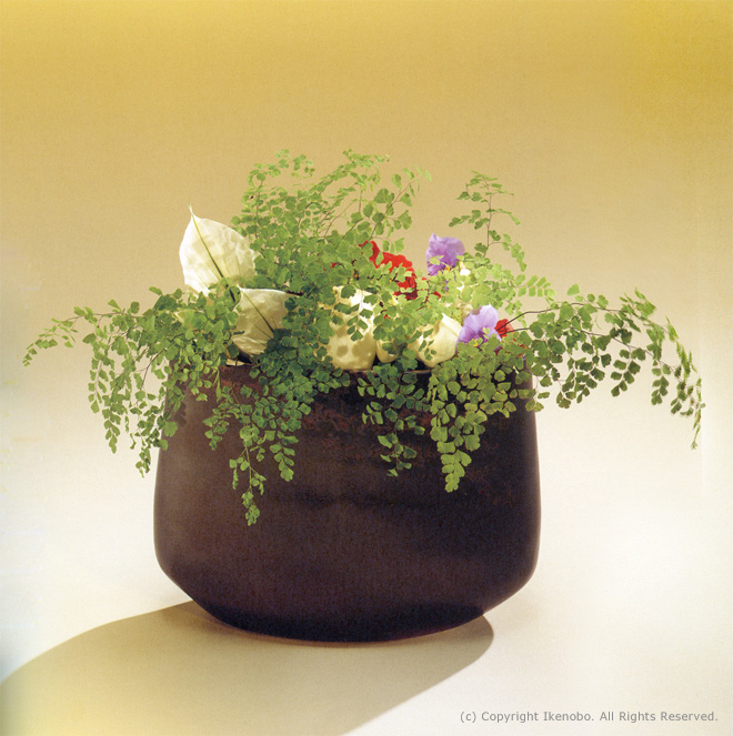 ikebana_jiyuka_pic1