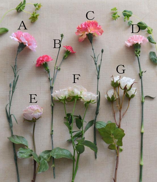 花並べる画像
