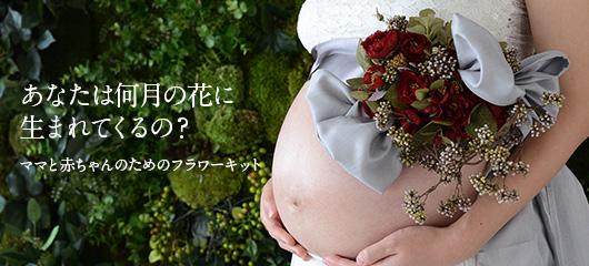 maternity_main
