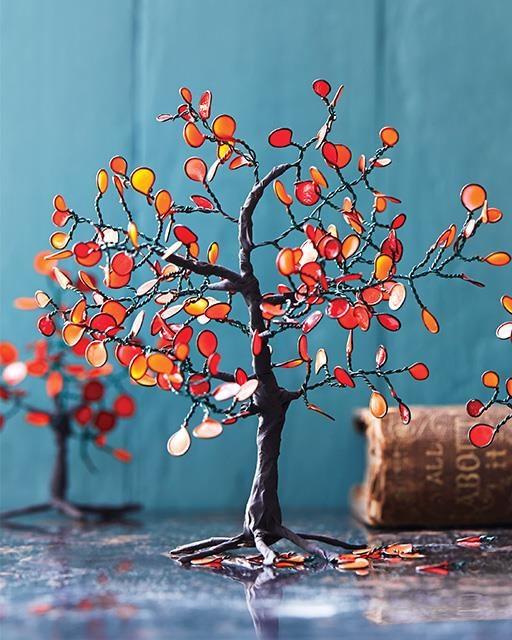 4689877_284854_tree1